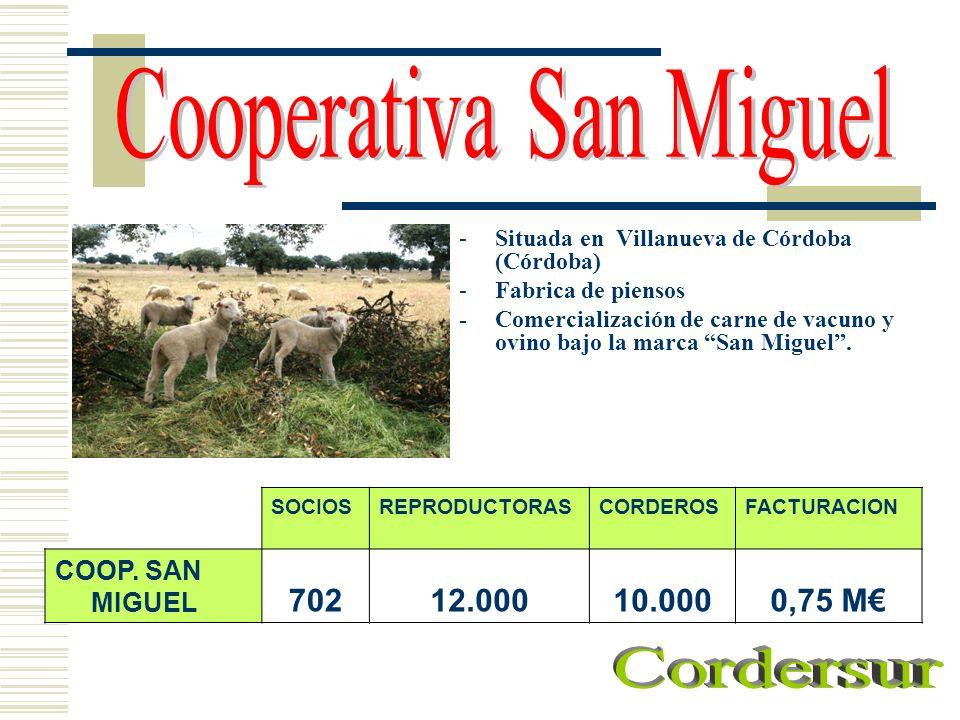 Cooperativa San Miguel