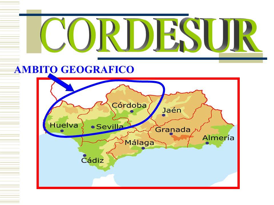 CORDESUR AMBITO GEOGRAFICO