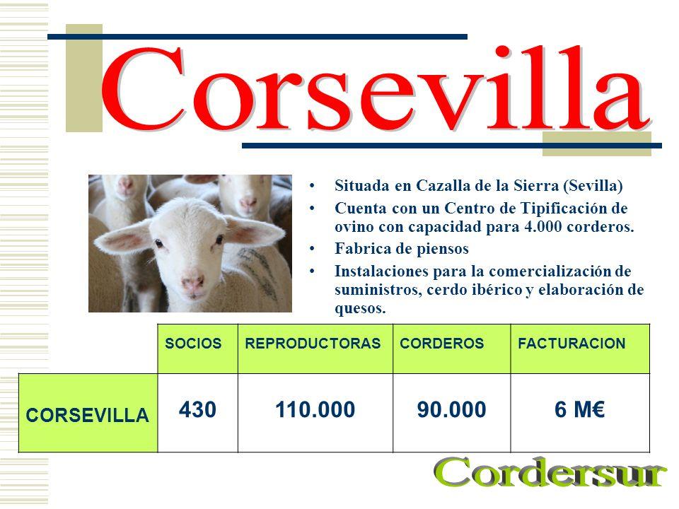 Corsevilla Cordersur 430 110.000 90.000 6 M€ CORSEVILLA