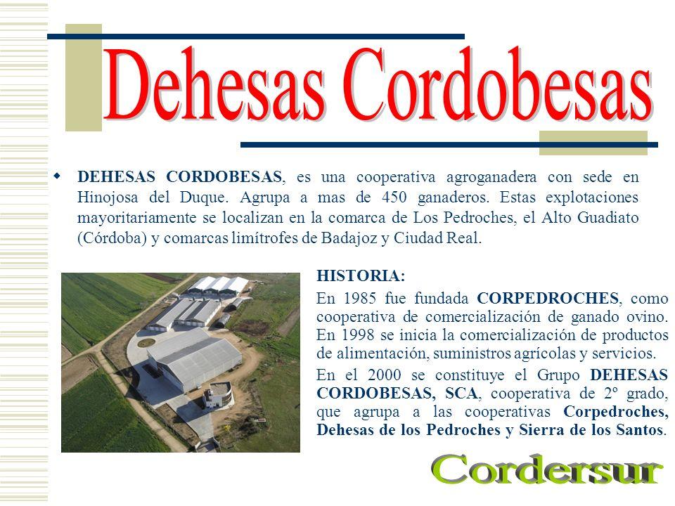 Dehesas Cordobesas Cordersur