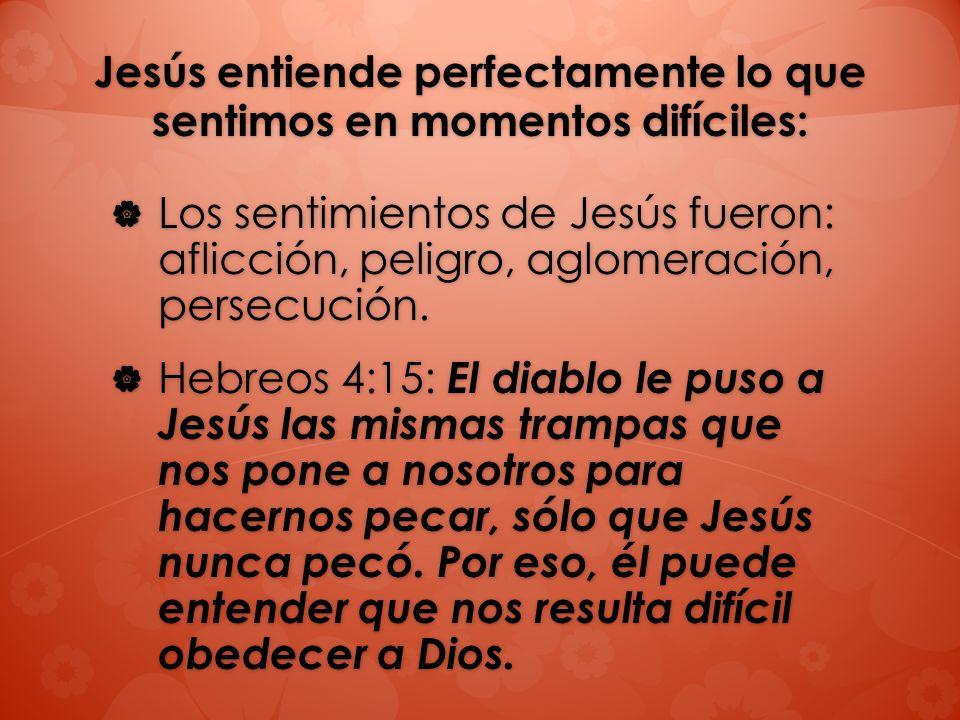 Jesús entiende perfectamente lo que sentimos en momentos difíciles: