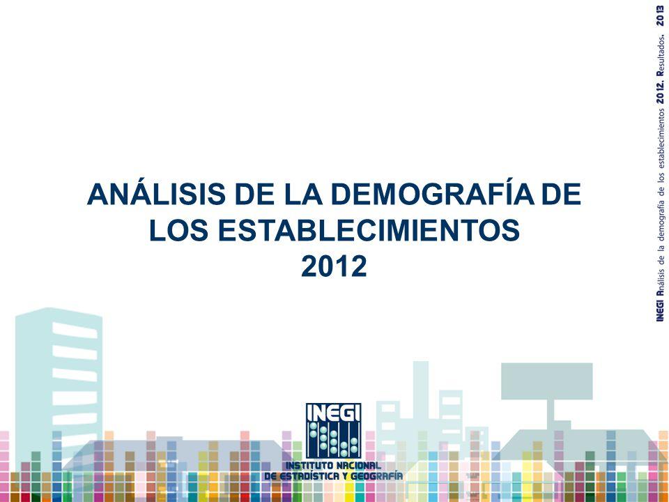 ANÁLISIS DE LA DEMOGRAFÍA DE LOS ESTABLECIMIENTOS 2012