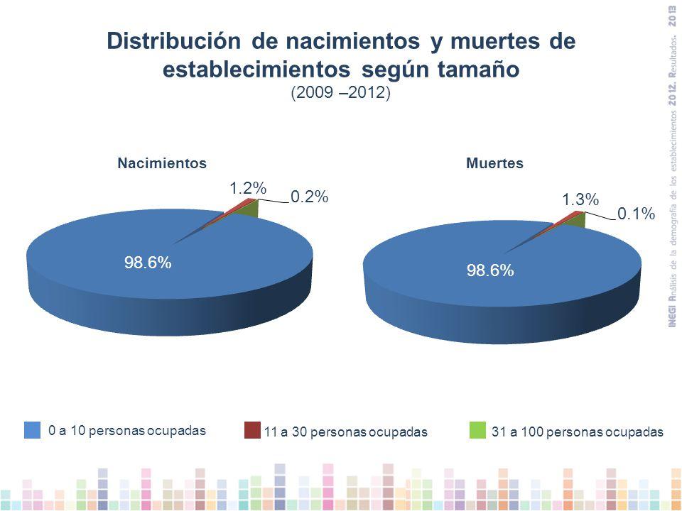 Distribución de nacimientos y muertes de establecimientos según tamaño