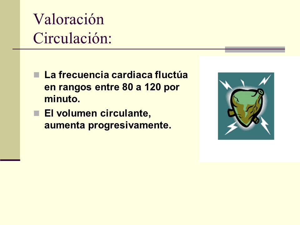 Valoración Circulación: