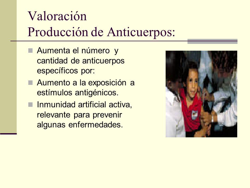Valoración Producción de Anticuerpos: