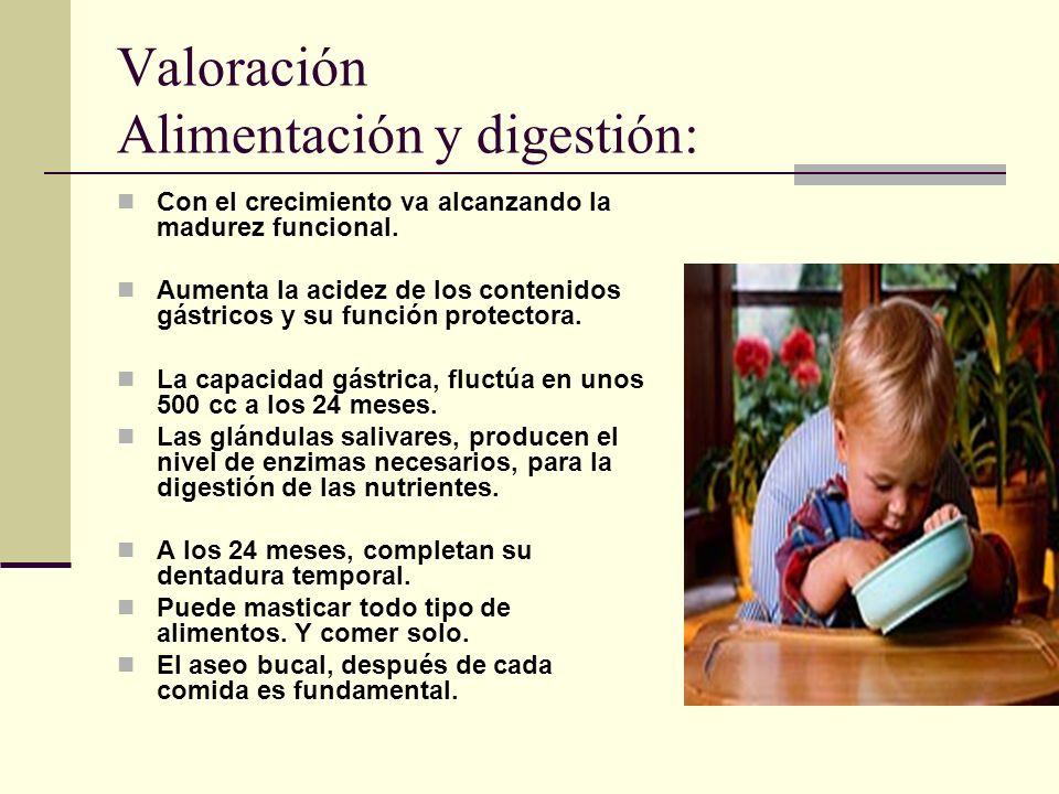 Valoración Alimentación y digestión: