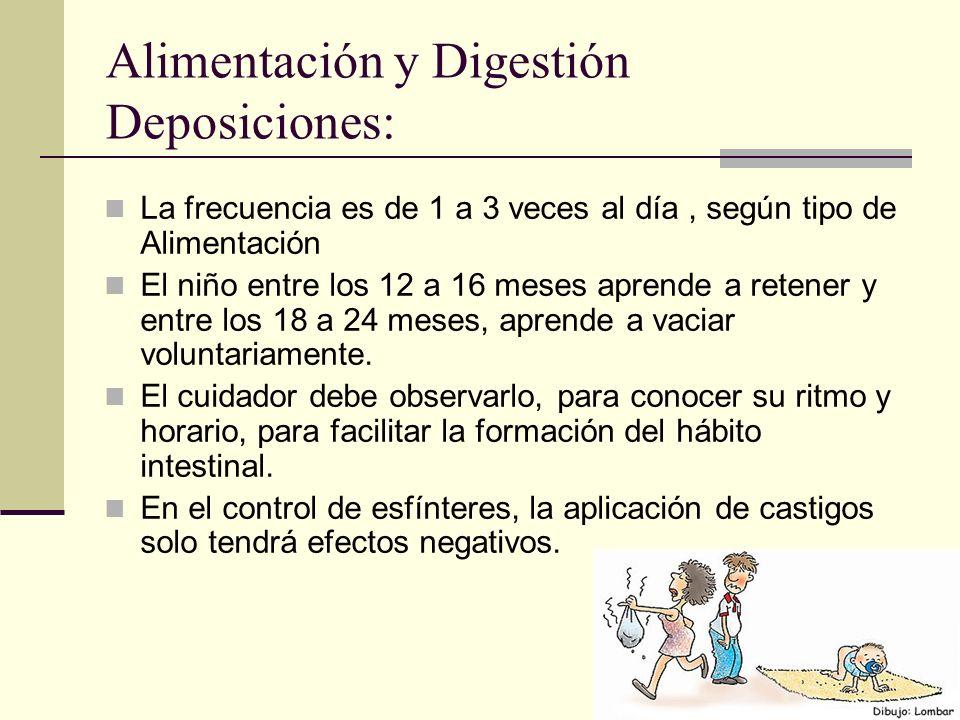 Alimentación y Digestión Deposiciones: