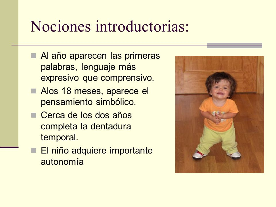 Nociones introductorias: