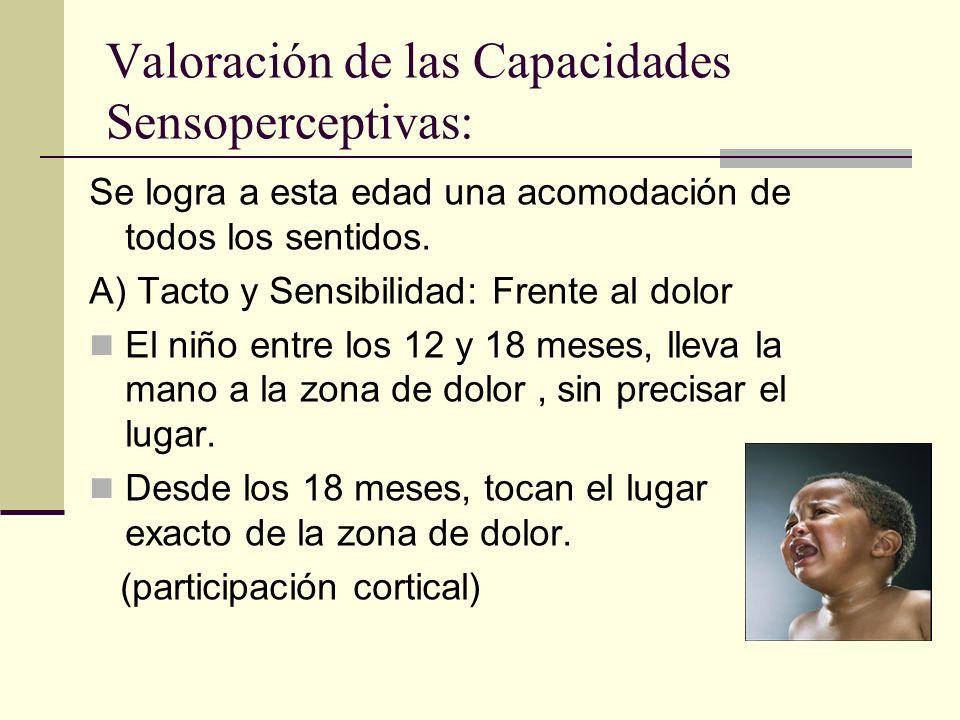 Valoración de las Capacidades Sensoperceptivas: