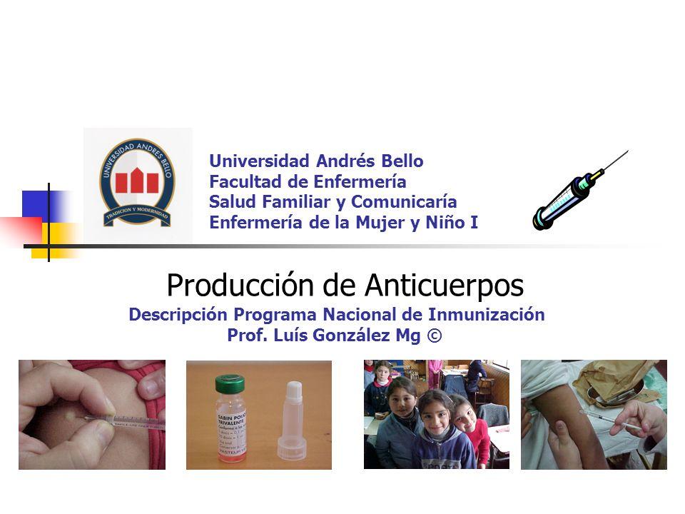Producción de Anticuerpos