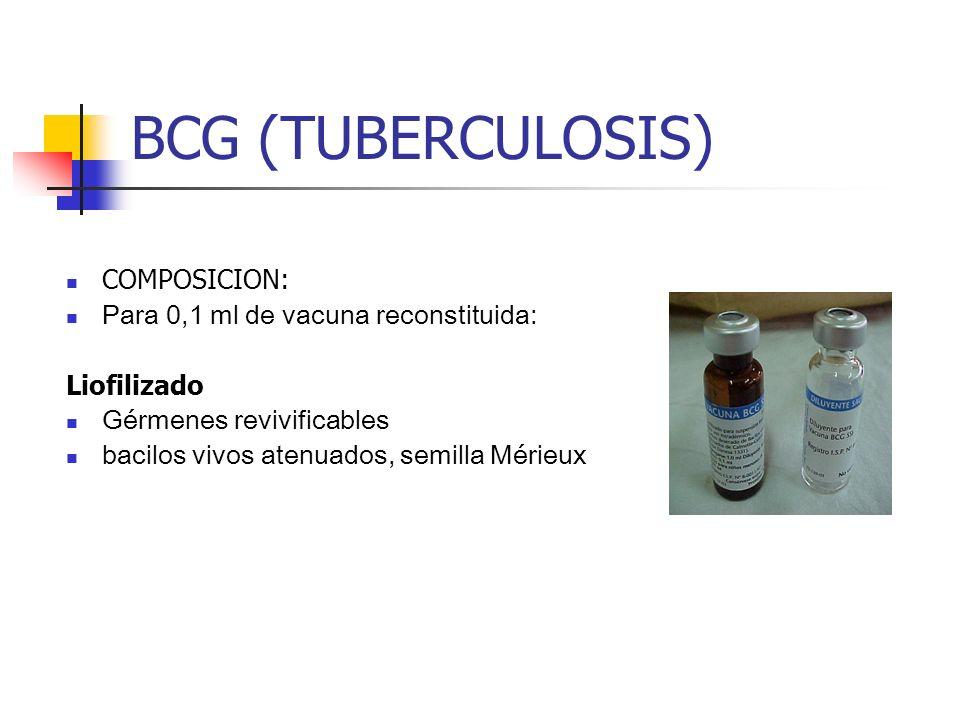 BCG (TUBERCULOSIS) COMPOSICION: Para 0,1 ml de vacuna reconstituida: