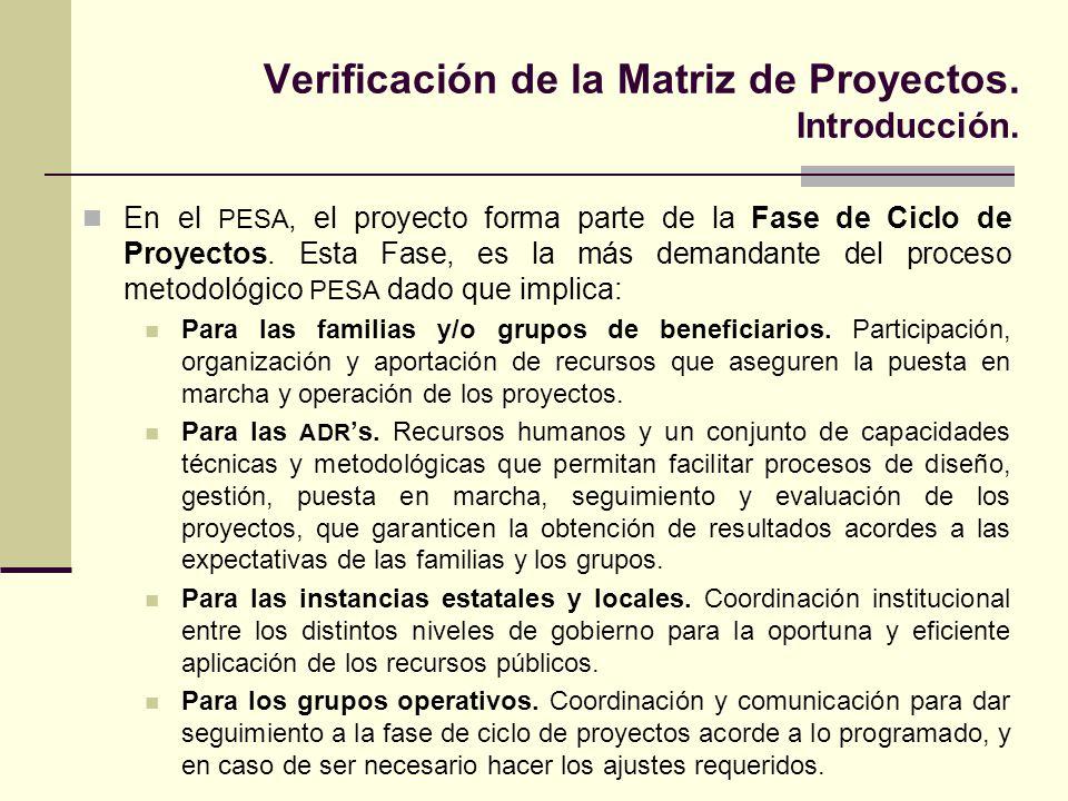 Verificación de la Matriz de Proyectos. Introducción.