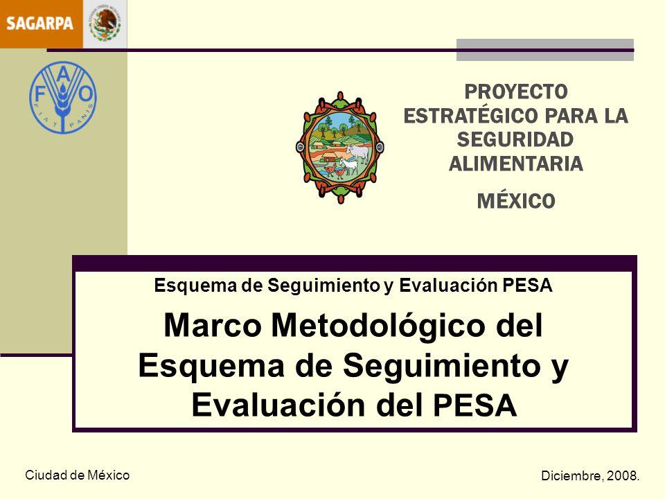 Marco Metodológico del Esquema de Seguimiento y Evaluación del PESA