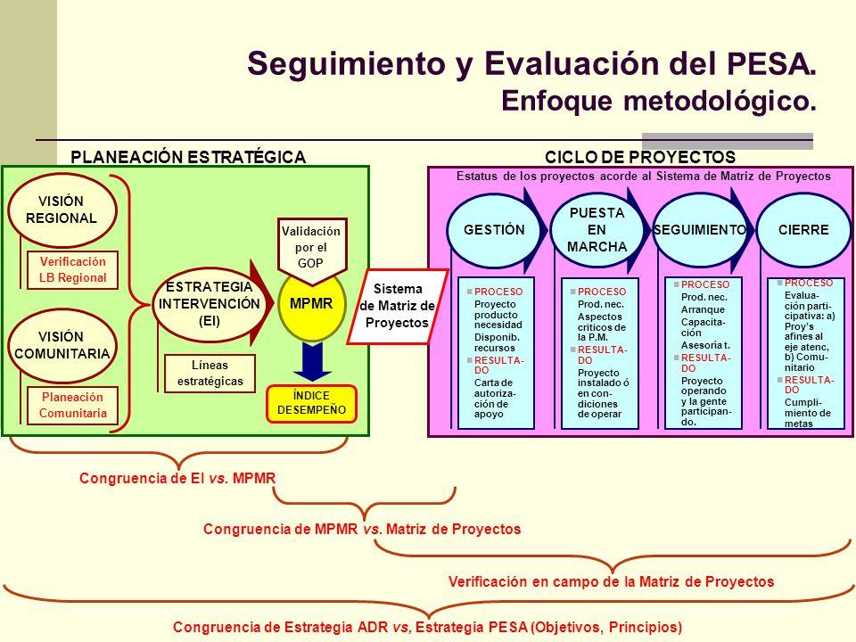 Seguimiento y Evaluación del PESA. Enfoque metodológico.