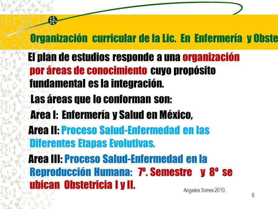 Organización curricular de la Lic. En Enfermería y Obstetricia