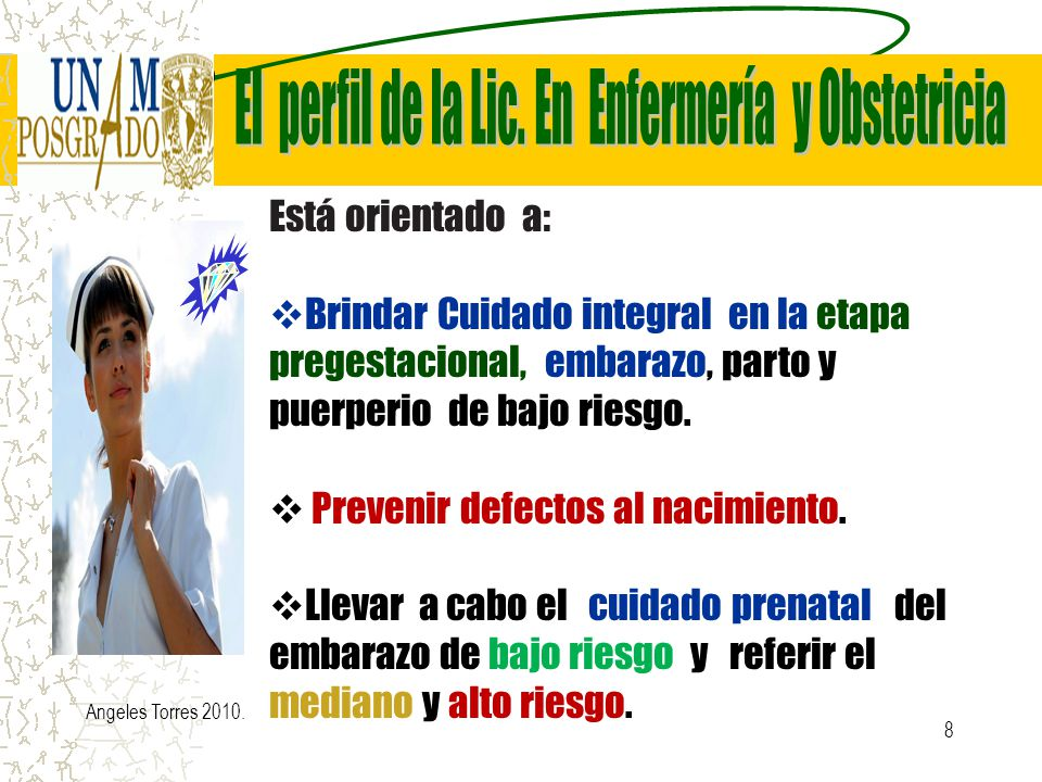 El perfil de la Lic. En Enfermería y Obstetricia