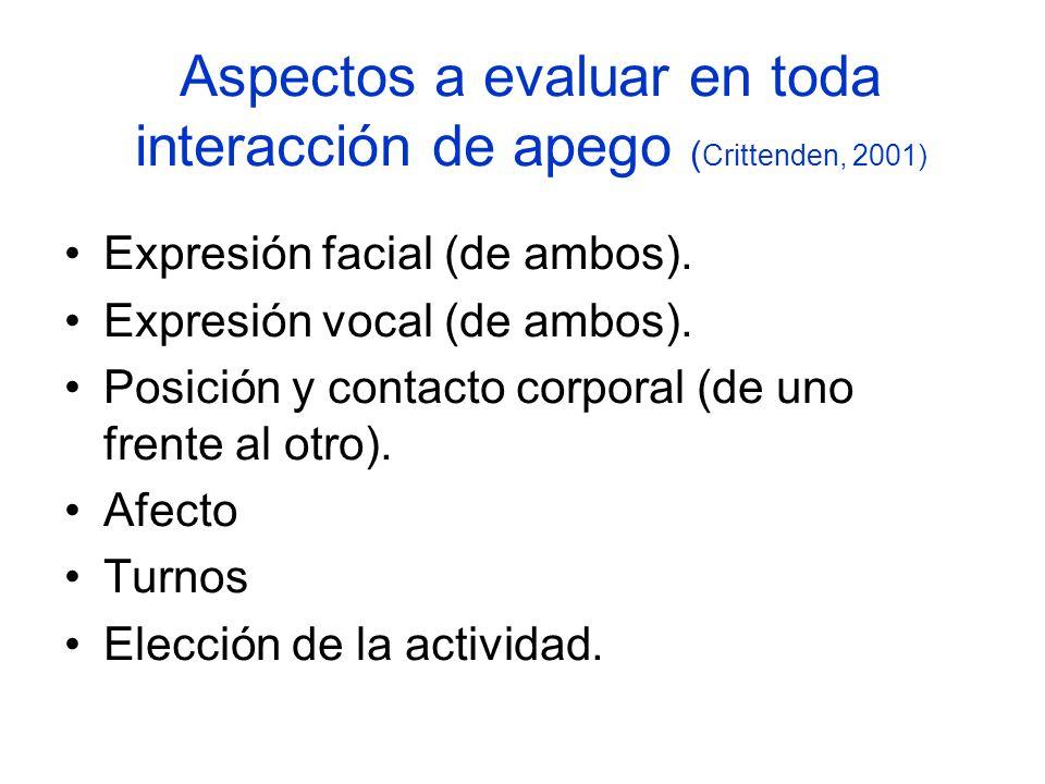 Aspectos a evaluar en toda interacción de apego (Crittenden, 2001)