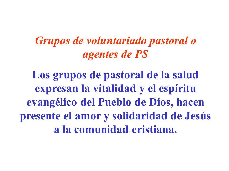 Grupos de voluntariado pastoral o agentes de PS