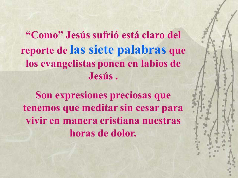 Como Jesús sufrió está claro del reporte de las siete palabras que los evangelistas ponen en labios de Jesús .