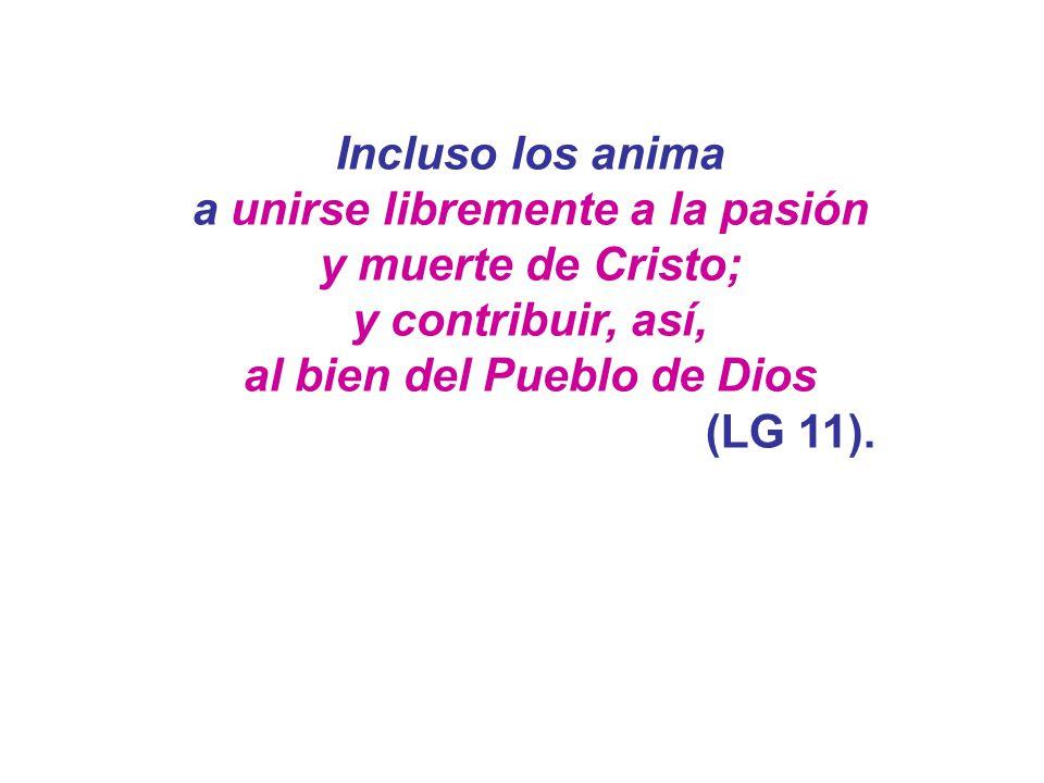 a unirse libremente a la pasión al bien del Pueblo de Dios