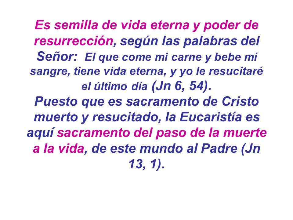 Es semilla de vida eterna y poder de resurrección, según las palabras del Señor: El que come mi carne y bebe mi sangre, tiene vida eterna, y yo le resucitaré el último día (Jn 6, 54).