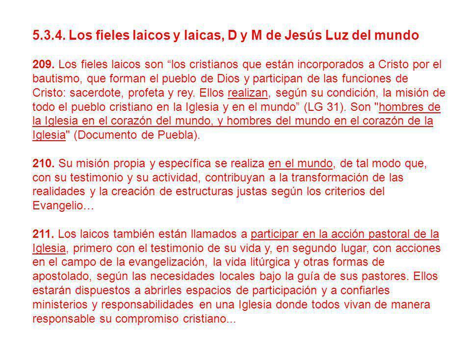 5.3.4. Los fieles laicos y laicas, D y M de Jesús Luz del mundo