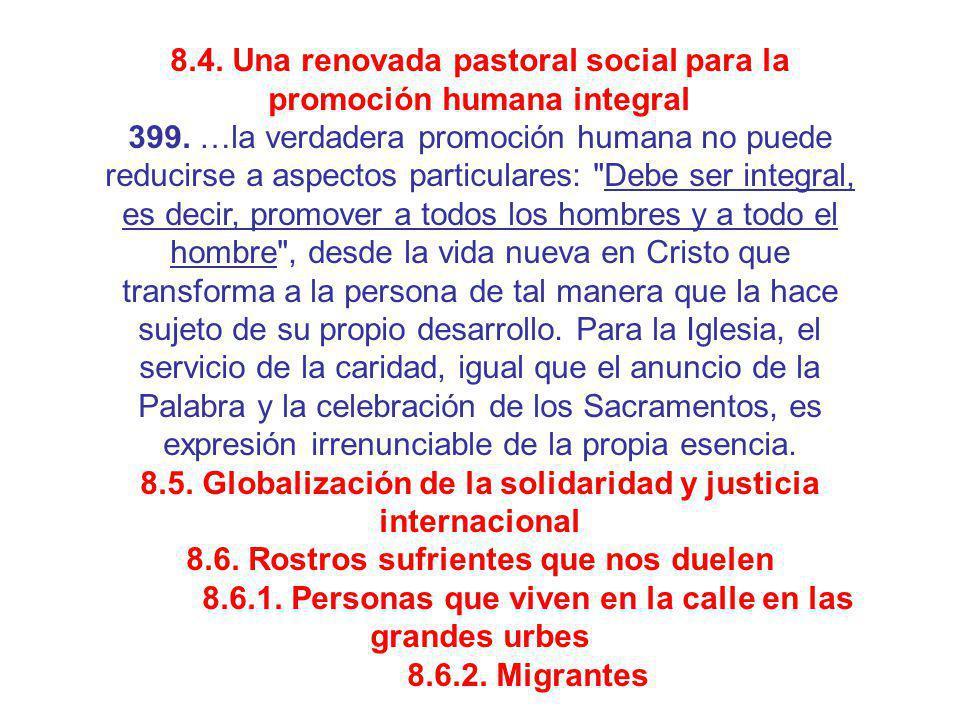 8.4. Una renovada pastoral social para la promoción humana integral