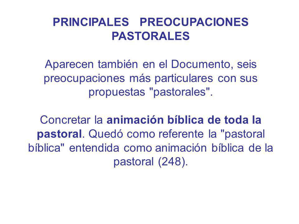 PRINCIPALES PREOCUPACIONES PASTORALES