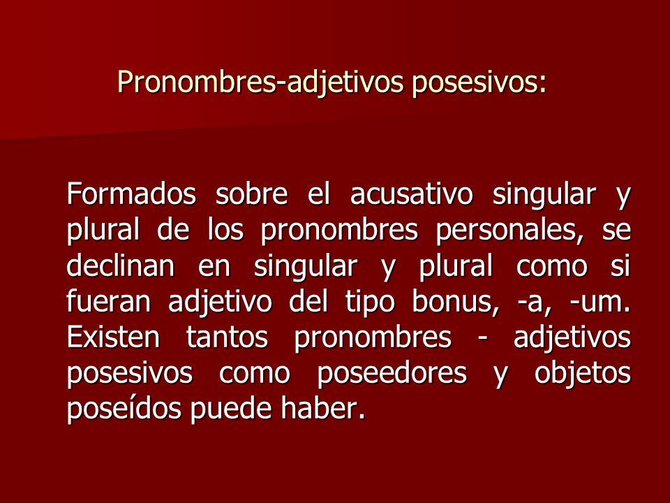 Pronombres-adjetivos posesivos: