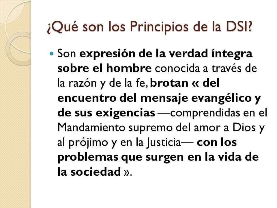 ¿Qué son los Principios de la DSI