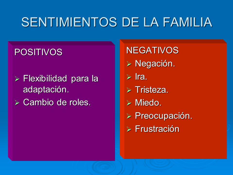 SENTIMIENTOS DE LA FAMILIA