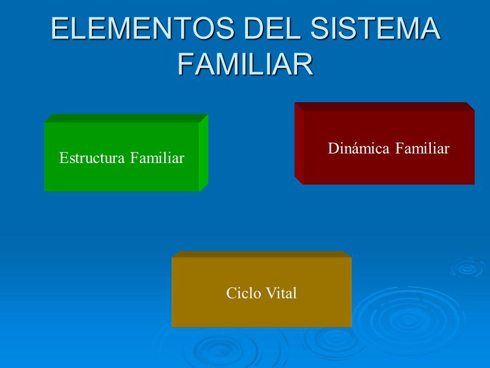 ELEMENTOS DEL SISTEMA FAMILIAR
