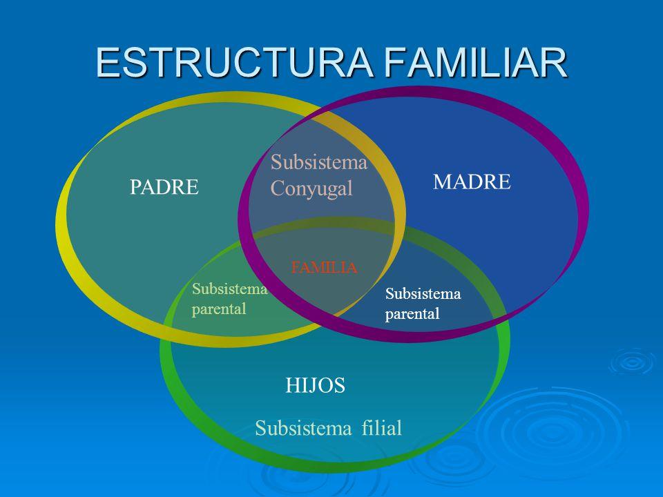 ESTRUCTURA FAMILIAR Subsistema Conyugal MADRE PADRE HIJOS