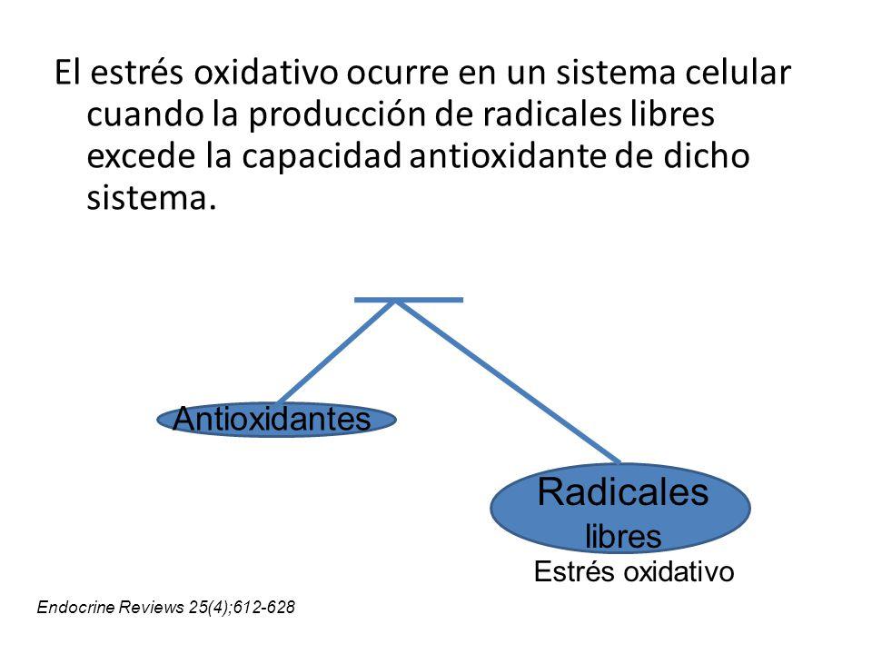 El estrés oxidativo ocurre en un sistema celular cuando la producción de radicales libres excede la capacidad antioxidante de dicho sistema.