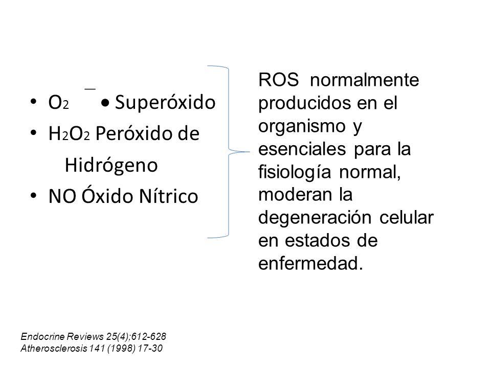 O2   Superóxido H2O2 Peróxido de Hidrógeno NO Óxido Nítrico