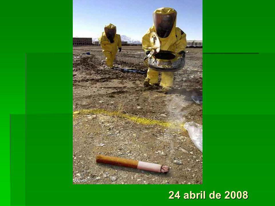 24 abril de 2008 3