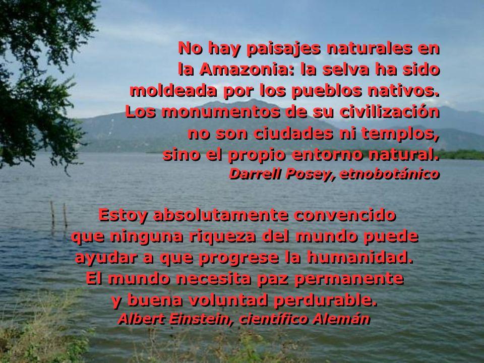 No hay paisajes naturales en la Amazonia: la selva ha sido
