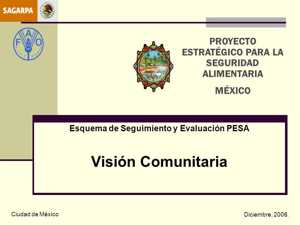 Esquema de Seguimiento y Evaluación PESA Visión Comunitaria