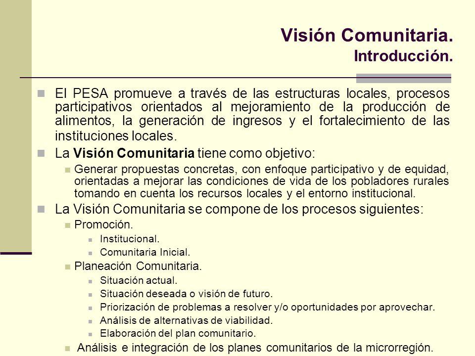 Visión Comunitaria. Introducción.