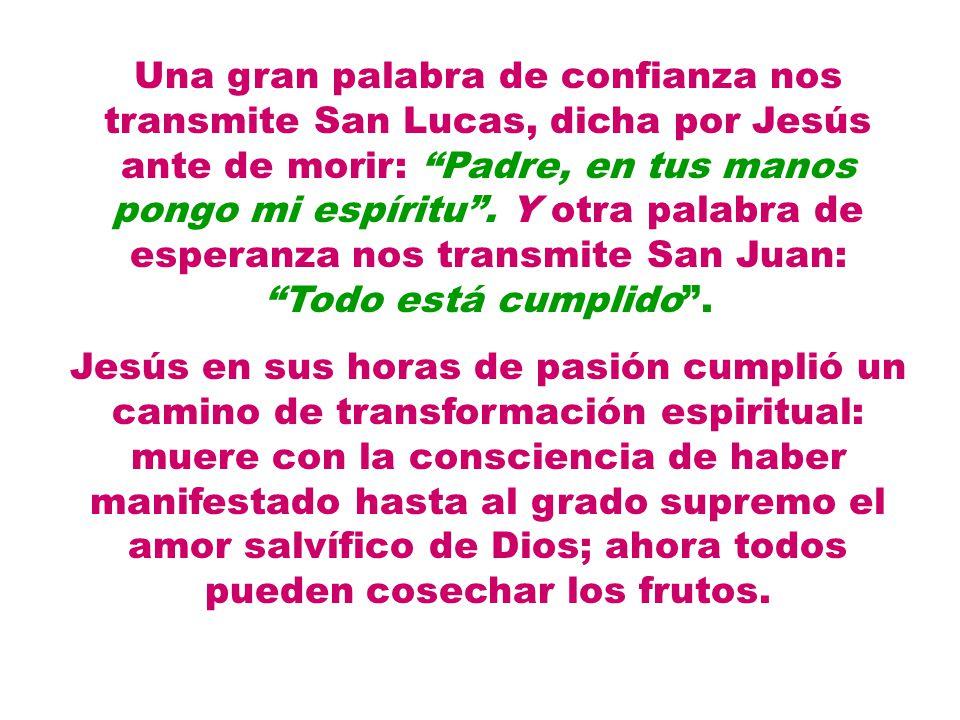 Una gran palabra de confianza nos transmite San Lucas, dicha por Jesús ante de morir: Padre, en tus manos pongo mi espíritu . Y otra palabra de esperanza nos transmite San Juan: Todo está cumplido .