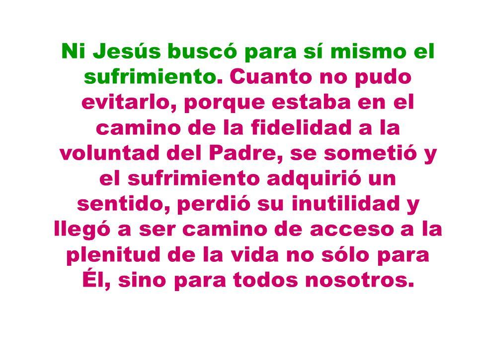 Ni Jesús buscó para sí mismo el sufrimiento