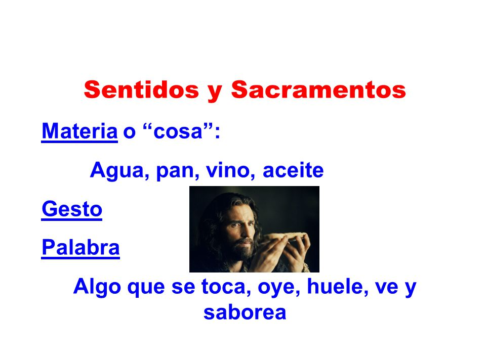 Sentidos y Sacramentos Algo que se toca, oye, huele, ve y saborea