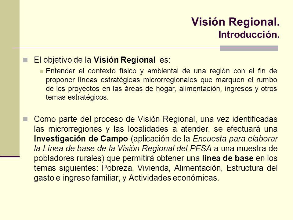 Visión Regional. Introducción.