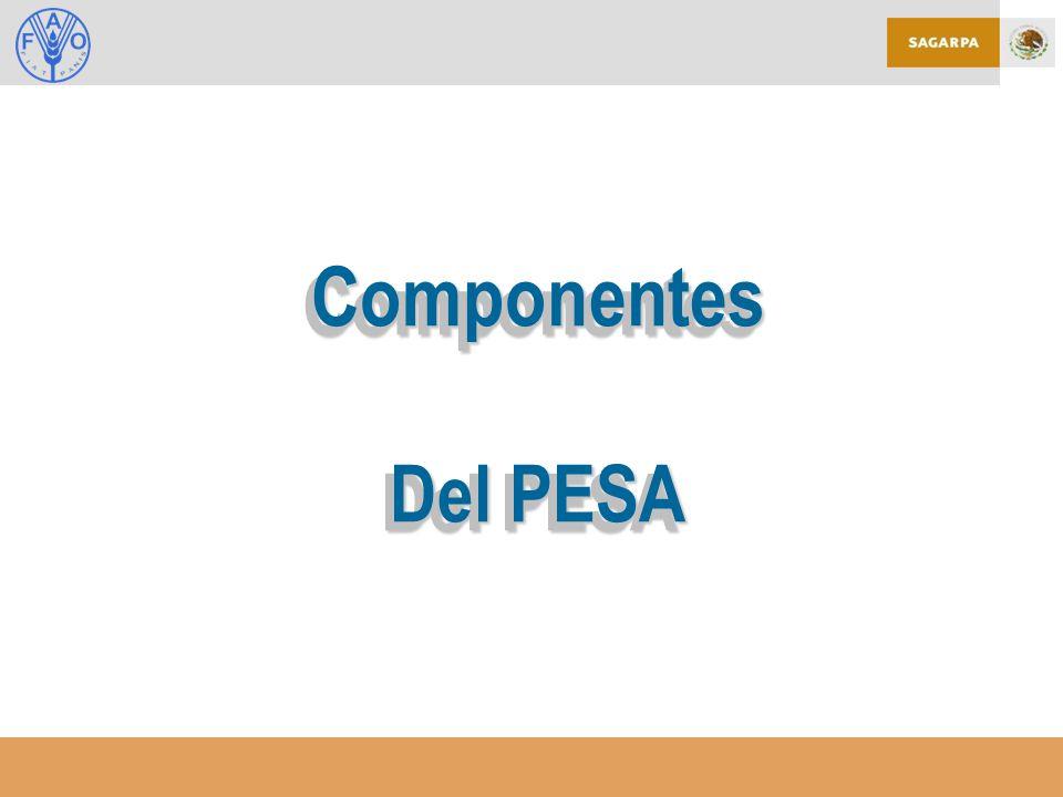 Componentes Del PESA