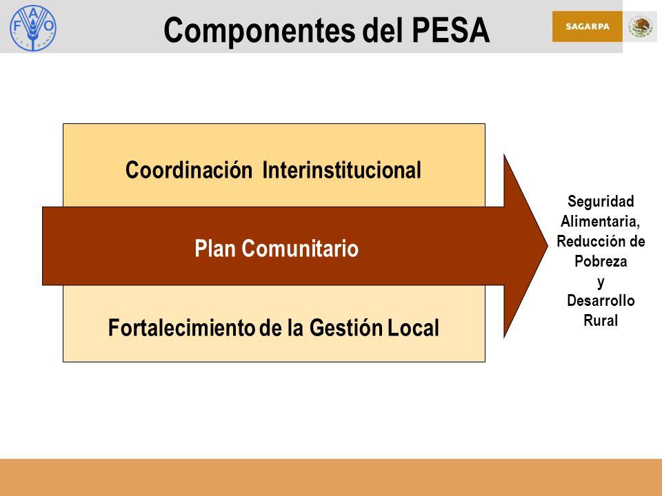 Componentes del PESA Coordinación Interinstitucional Plan Comunitario