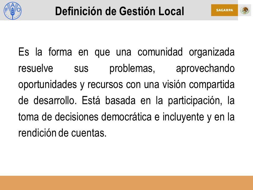 Definición de Gestión Local