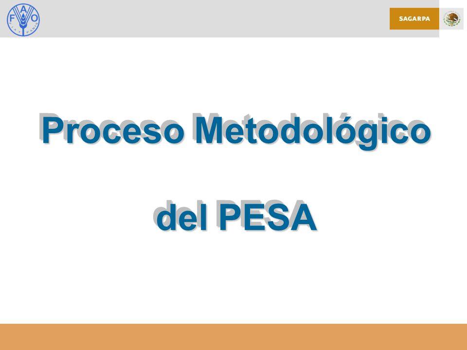 Proceso Metodológico del PESA