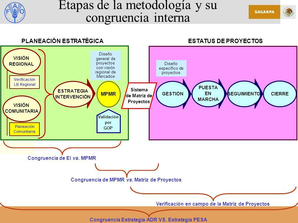 Etapas de la metodología y su congruencia interna