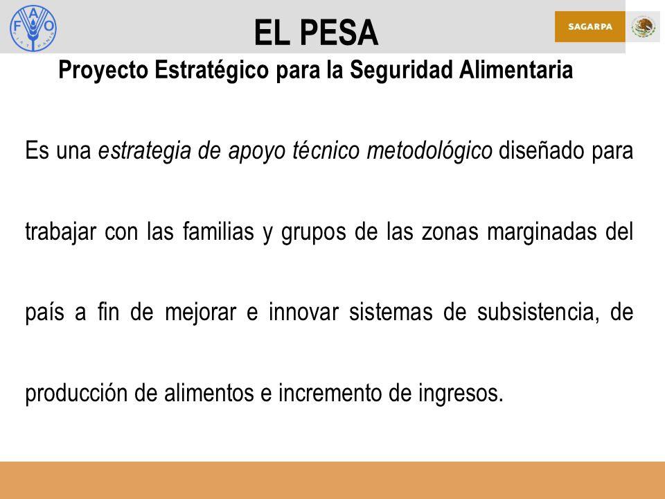 EL PESA Proyecto Estratégico para la Seguridad Alimentaria