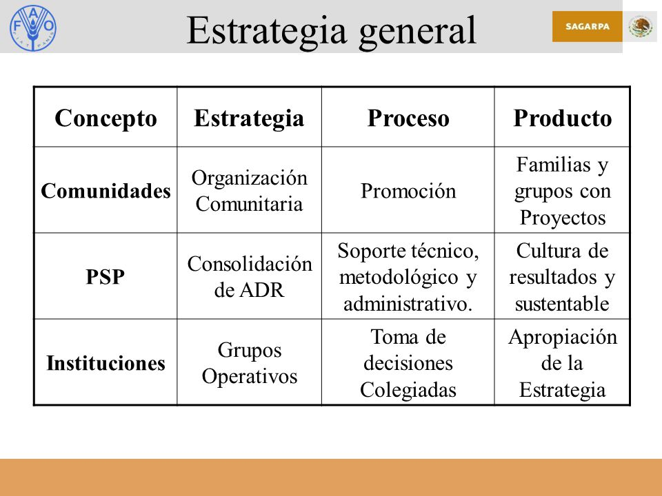 Estrategia general Concepto Estrategia Proceso Producto Comunidades